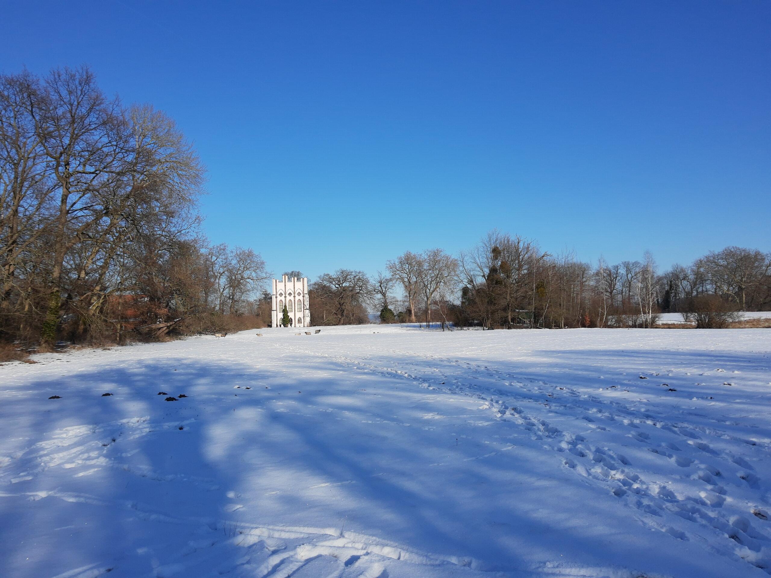 Ackerfläche am Schloss