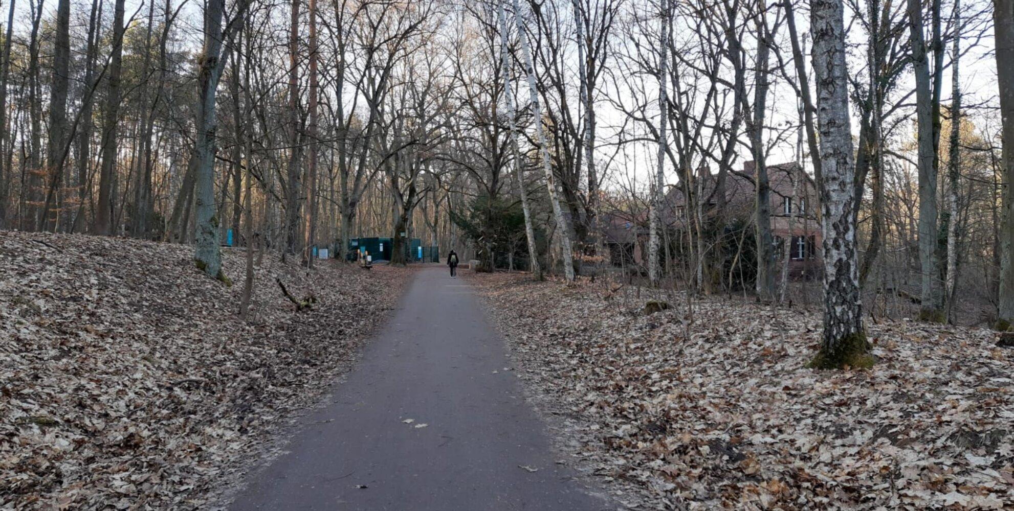 Pfade zu Wald.Berlin.Klima.